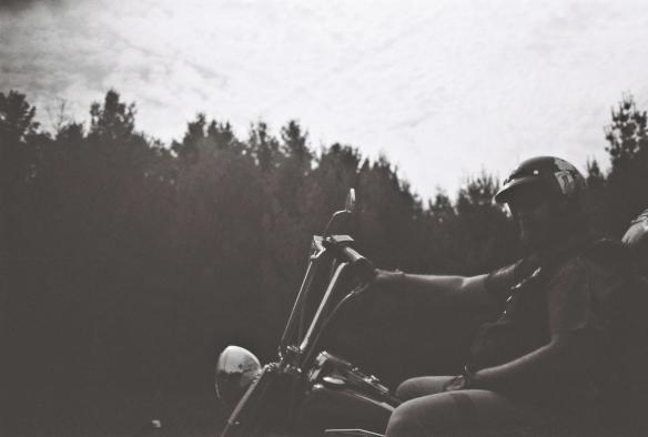 Beardo Evo Harley